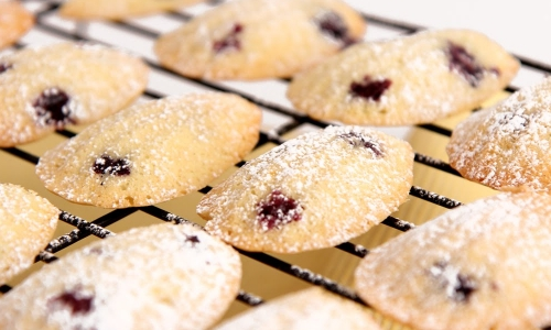 Lemon Blueberry Madeleines